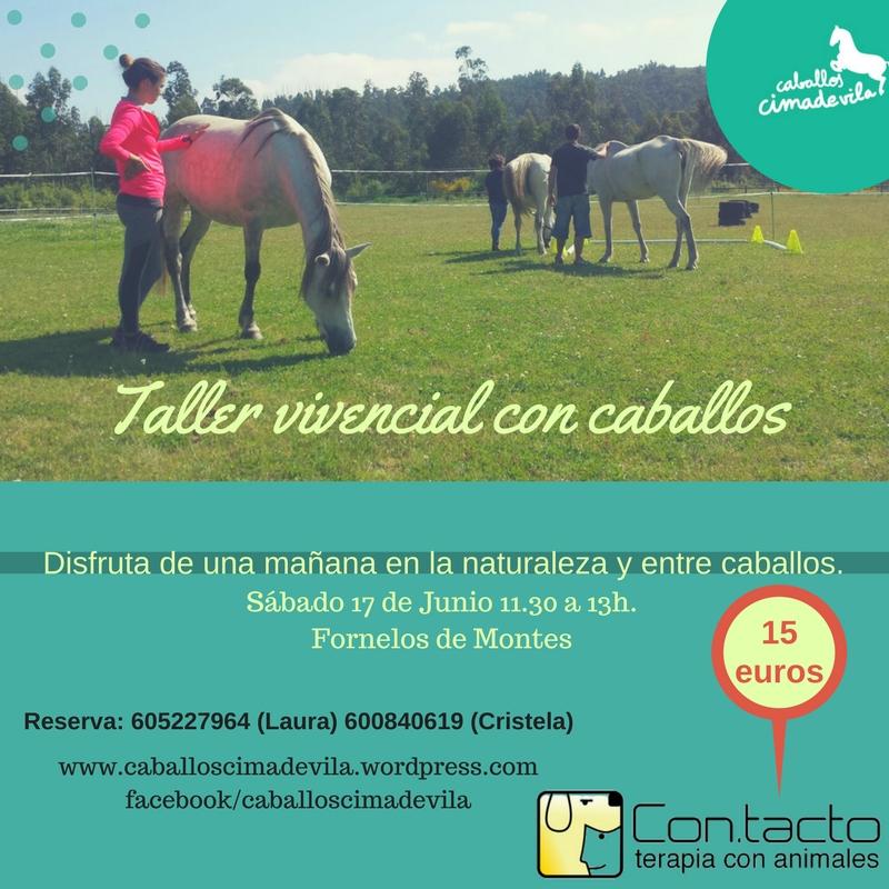 Nuevo Taller de desarrollo personal con caballos!